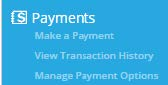 payments btyc